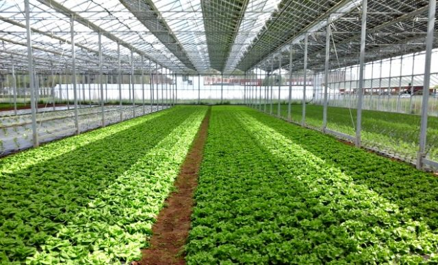 Morocco Signs MoU with French Development Agency for Agriculture Plans