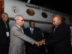 Algeria's Presidential Plane Takes Polisario Leader to South Africa