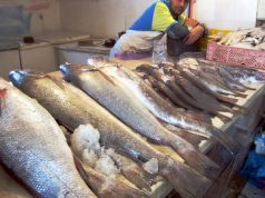 Moroccan fishermen in Agadir are selling their fish directly to the public, cutting out the middle-men who hike up fish prices in Ramadan.