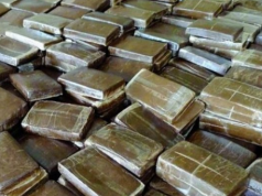 Police Seize 460 Kg of Cannabis Resin in Tangier-Med Port