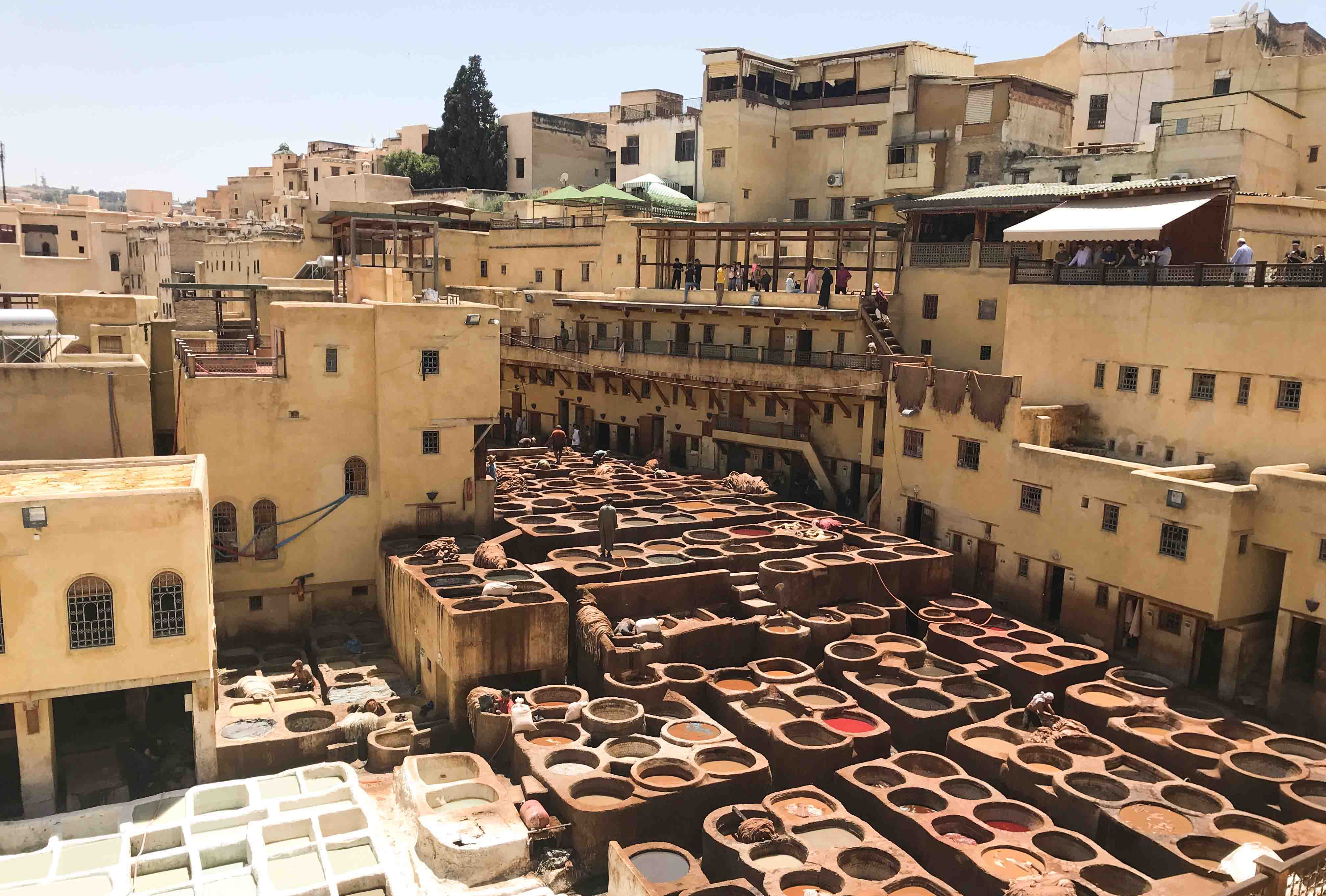 Overlooking Fez's largest tannery - Chouara. If you're lucky, they'll give you a sprig of fresh mint to sniff while your guide explains the process before you.