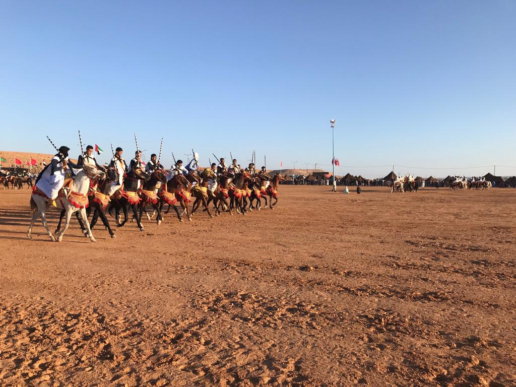 A team of tbourida horsemen ride together, in a show of traditional Moroccan horsemanship.