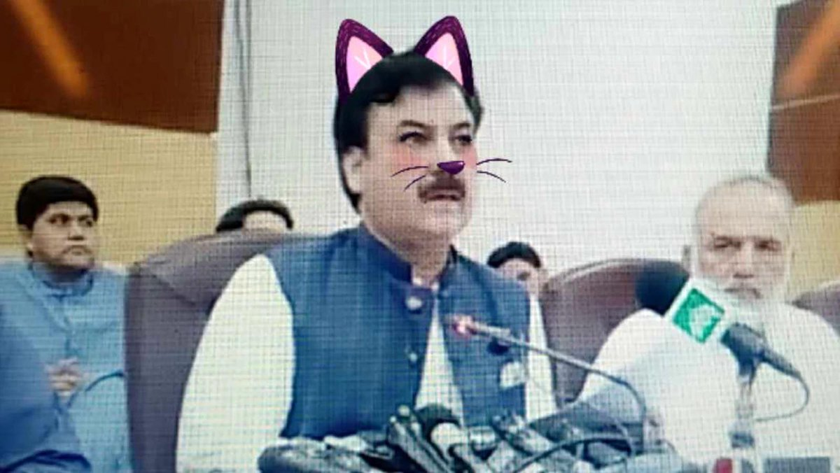 Image result for Pakistani politician press conference live streamed with accident cat filter