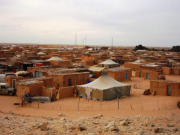 Polisario Arrests New Sahrawi Activist in Rabouni, Algeria