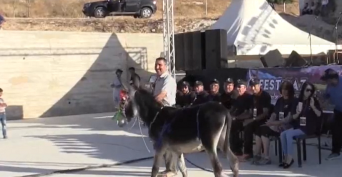 'Cleopatra' the Donkey Wins Beauty Pageant in Morocco