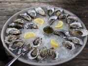 Oualidia to Hold Oyster Festival from July 26 to August 4