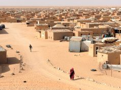 Saharawi Moroccans' Alliance Denounces Recruitment of Children in Tindouf Camps in Geneva