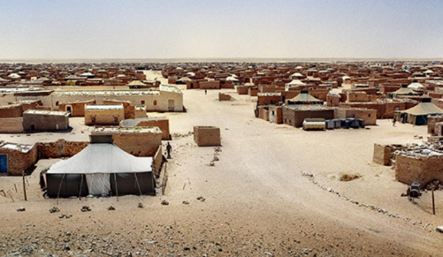 Italian Research Group Warns Against Polisario's Political Propaganda, Violent Crimes