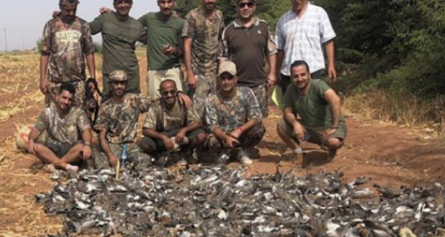 Ministry Suspends Hunting License from Company Responsible for 'Bird Massacre'