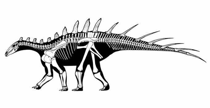 Paleontologists Discover Oldest Ever Stegosaur Bones in Morocco