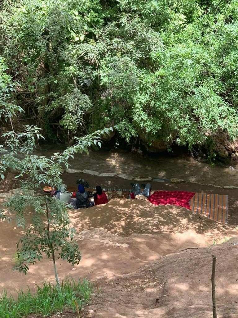 River picnics