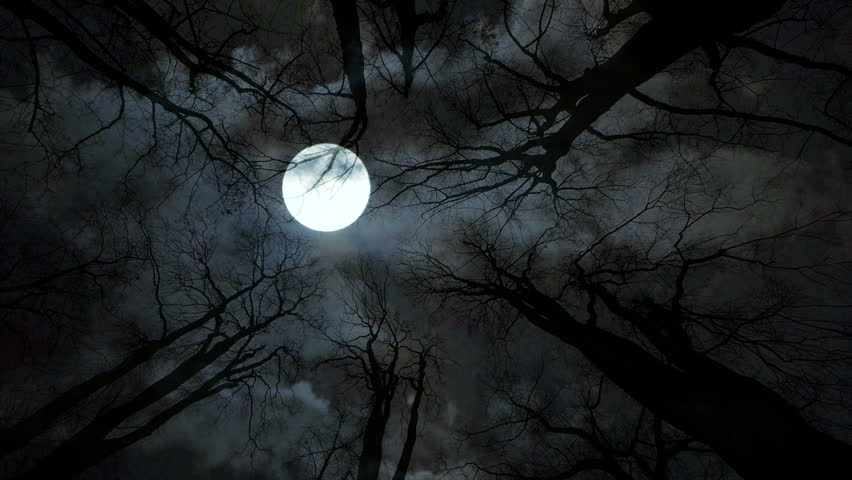 'Spooky' Full Moon to Occur on Friday 13th for 1st Time in 13 Years