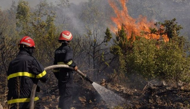 Fires Ravage 65 Hectares of Forest in North of Morocco