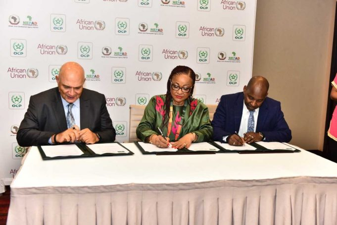OCP Group Signs MoU to Support Agriculture Development in Africa