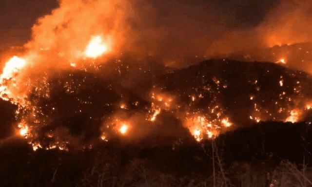 Series of Wildfires Ravage Lebanon
