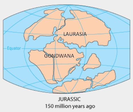 Flesh-Eating Dinosaurs Migrated Between Morocco andEurope