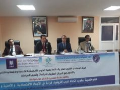 Top Analysts Talk Moroccan Diplomacy in Africa