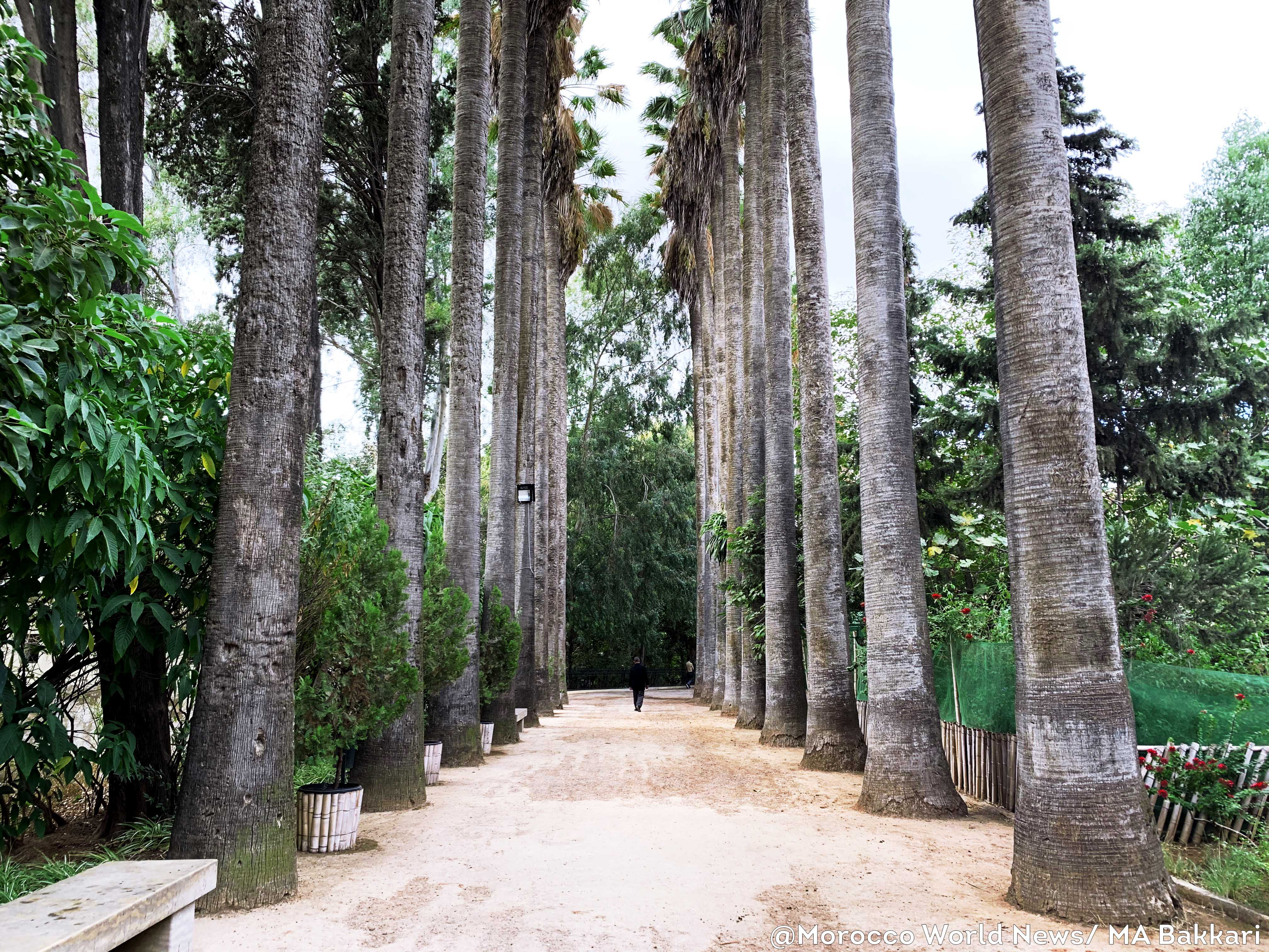 Jnan Sbil Park Morocco World News