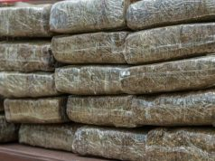 Moroccan Police Seize 130 Kilograms of Cannabis Resin Near Ceuta