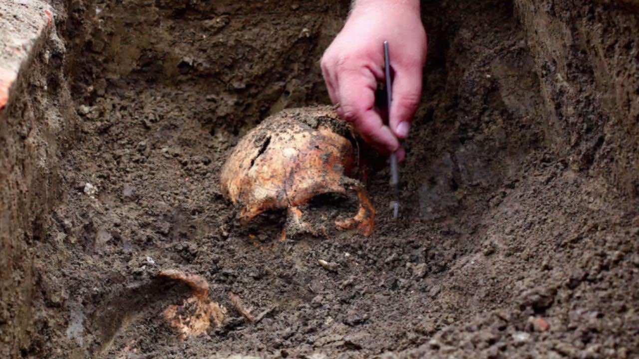 Moroccan Gardeners Unearth Human Bones in Safi Schoolyard