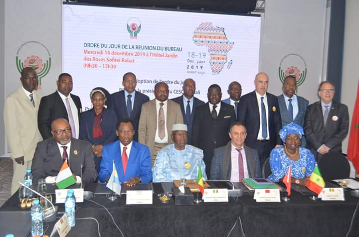 African Economic and Social Council Appoints Mohamed Reda Chami as President