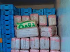 Agadir police seize cannabis resin in truck