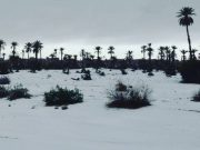 Weather Office Forecasts Stormy Snowfall, Rainfall Across Morocco Next Week