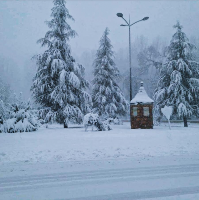 snowfall in morocco's Ifrane