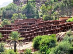 Discover the World's Largest Traditional Bee Yard at Morocco's Inzerki Apiary