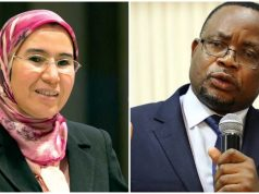 Morocco, Zimbabwe Consider Cooperation in Sustainable Development