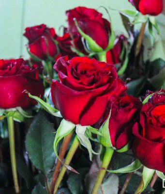 How do Moroccans Celebrate Valentine's Day?