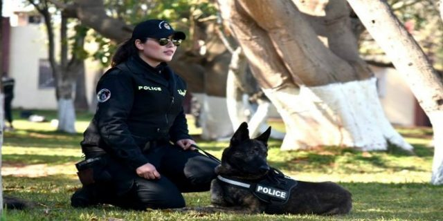 Moroccan Police Dogs Abort International Drug Trafficking Operation