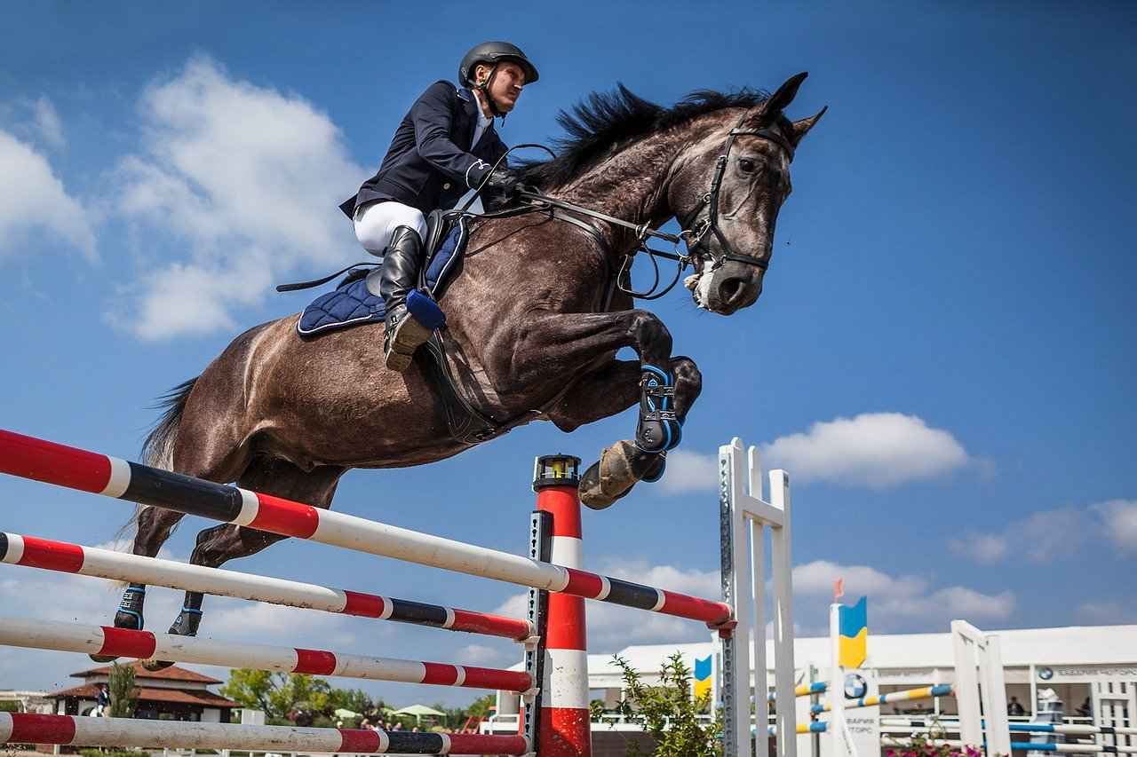 Moroccan Equestrian Team to Compete in 2020 Tokyo Olympics