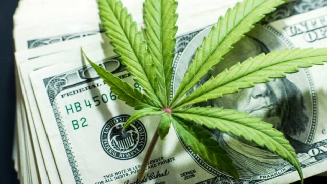 US Study: Marijuana a Necessity During COVID-19 Crisis