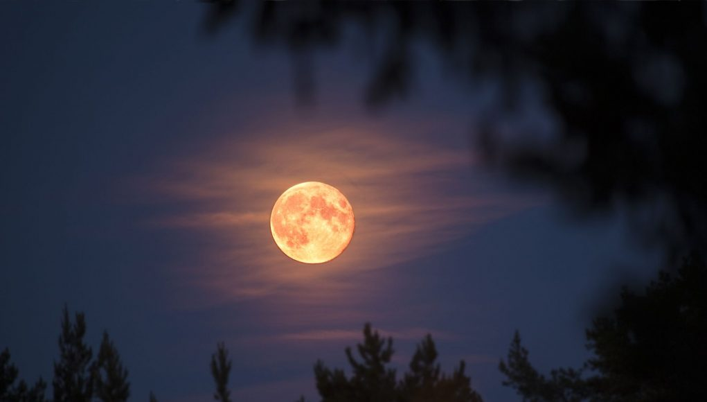 April's Pink Moon: How to View the Biggest Supermoon of 2020 in Morocco