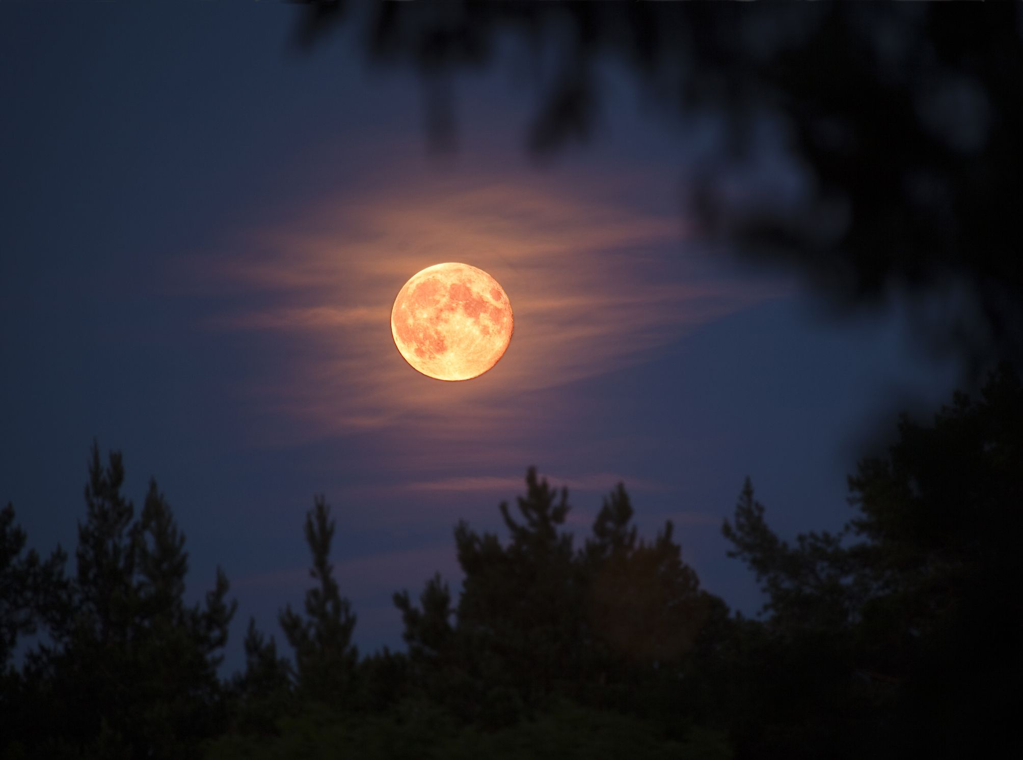 Super Pink Moon coming in April: When, where to watch during lockdown