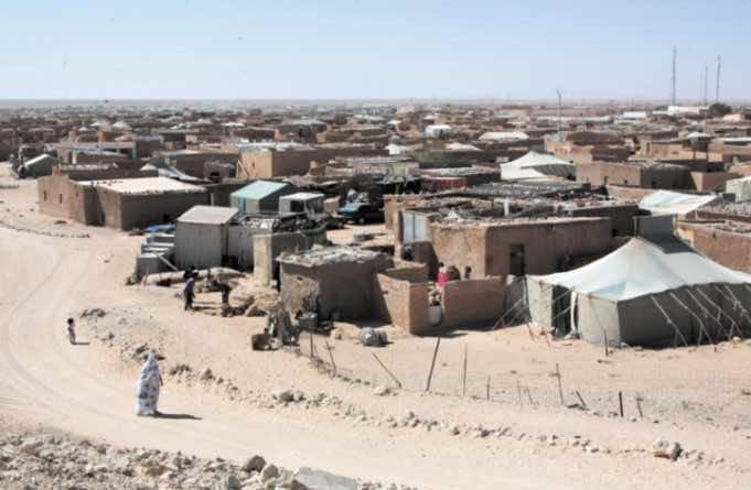Latin American NGOs: 'Panic and Despair' Rife in Tindouf Camps
