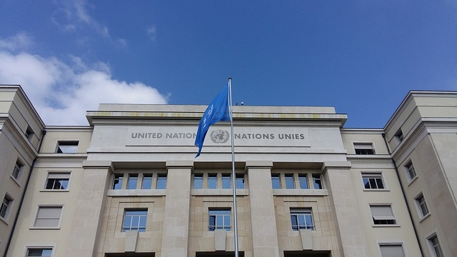 The UN released a report outlining how governments should respect human rights during the COVID-19 lockdown