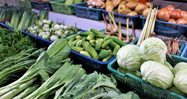 Morocco Reports Decline in Vegetable Prices, Assures of Adequate Supply