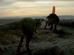 Paleontologists Eastern Morocco Once 'Most Dangerous' Region on Earth