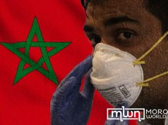 Young Moroccans Lead the Way Against COVID-19 at Home and Abroad