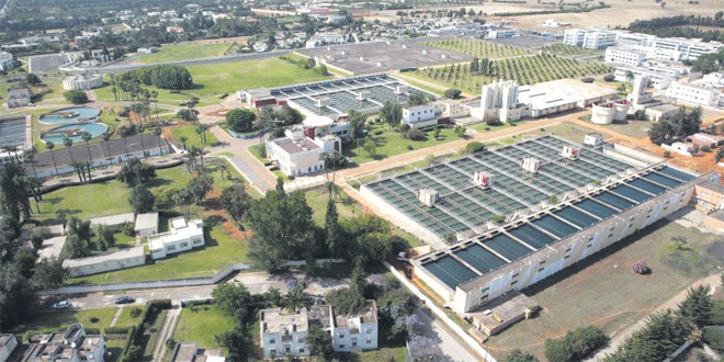 Tangier Program Calls Attention to Wastewater Treatment in Morocco