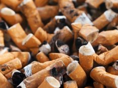 WHO: 'World No Tobacco Day' and the Prevalence of Smoking in Morocco