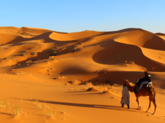 CNT Outlines Recovery Plan for Morocco's Tourism Industry