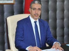 Minister: Green Hydrogen Will Speed Up Morocco's Energy Transition