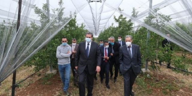 Minister of Agriculture Visits Hailstorm-Hit Fields in Fez-Meknes Region