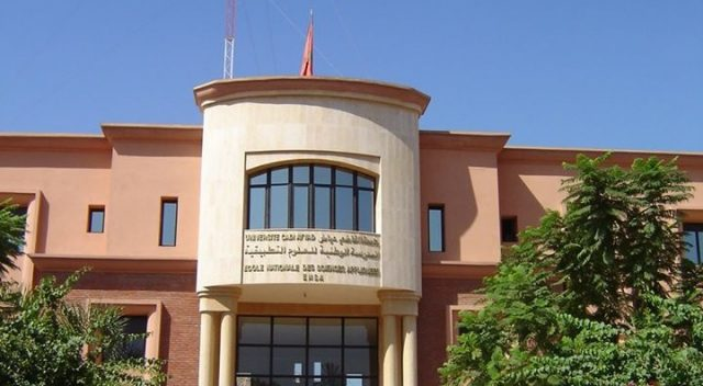 Moroccan Academics Create 'Marocovid' Application to Track COVID-19