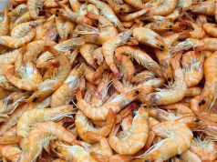 Morocco's COVID-19 Lockdown Sparks Peeled Shrimp Shortage in Belgium