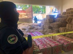 Morocco Seizes 2 Tons of Cannabis Resin Near Fez