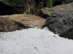 Violent Hailstorm Damages 9,100 Hectares of Agriculture in Fez-Meknes